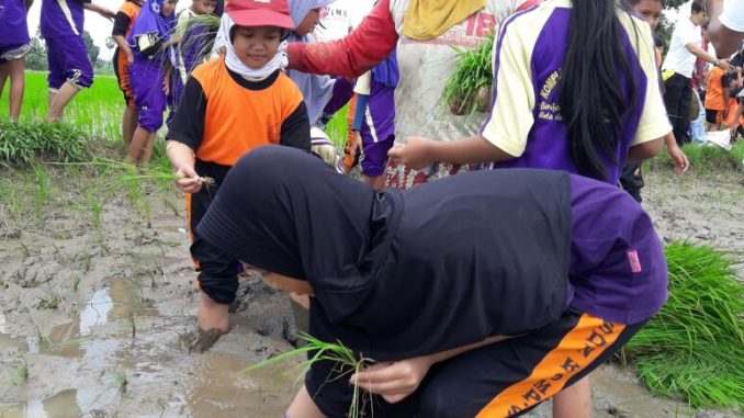 KoSamJa Makassar