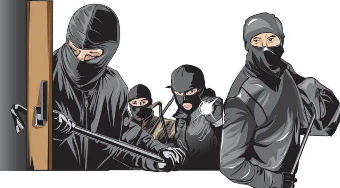 pencuri lintas provinsi