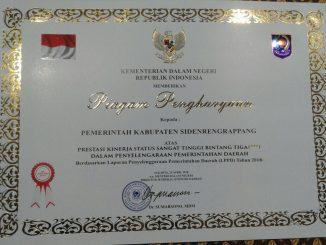 penghargaan pemerintahan