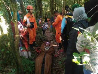 Tim SAR evakuasi korban