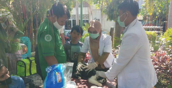 Vaksinasi dan Beri Vitamin Hewan Peliharaan Warga, Cara Distanpan Polman Peringati Hari Rabies se-Dunia